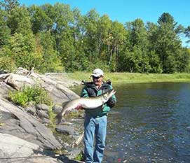 Fishing French River, Bear's Den Lodge » NORTHERN ONTARIO FISHING AT IT'S FINEST!image