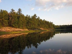 Landscape photography of the calm French River waters and Pine forest in June.