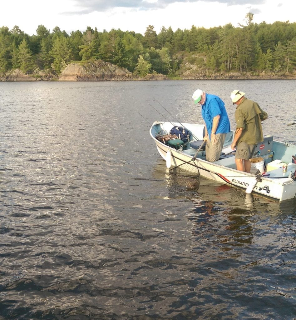 Heat of the Moment Fishing French River Muskie