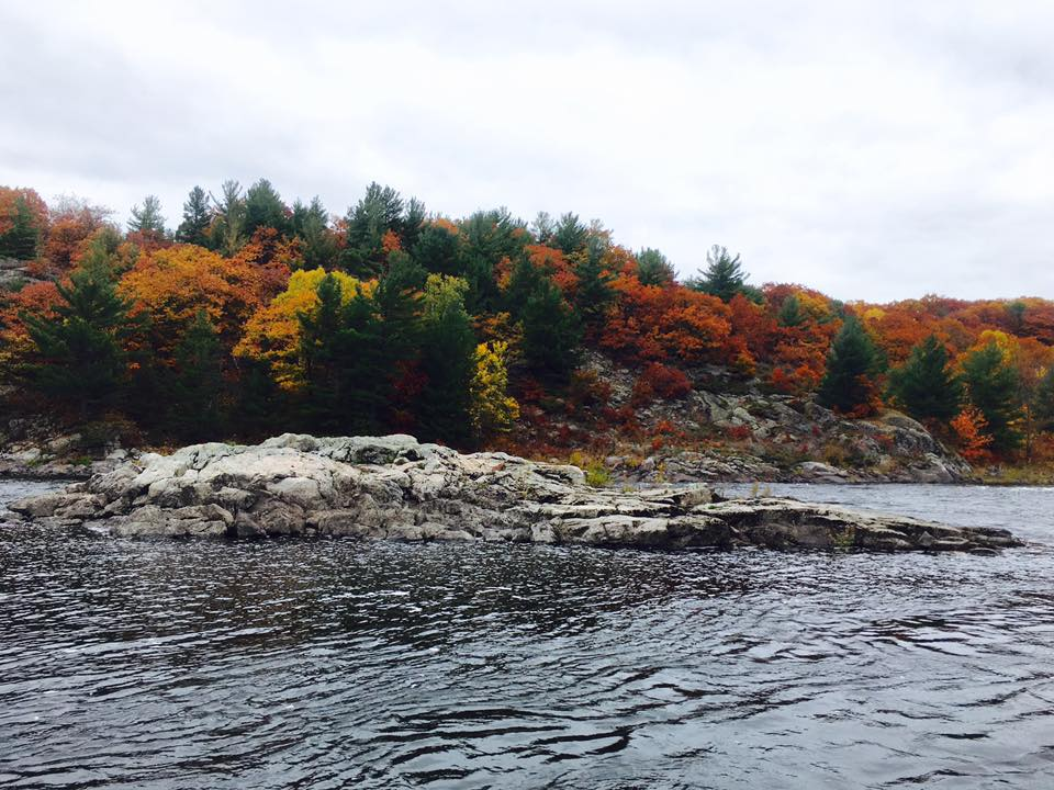French River Flat Rapids, Fall Fishing Ontario, Landscape Ontario Provincial Park Photography